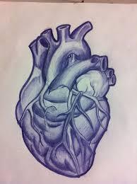 the 25 best anatomical heart tattoos ideas on pinterest