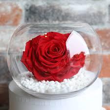preserved roses rosita flowers preserved florals preserved
