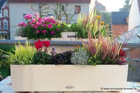 herbstbepflanzung balkon raumzauber sinnwelt wenn die tage kürzer werden