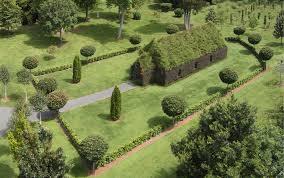 new zealand native plants and trees tree church