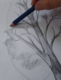 best 25 how to draw trees ideas on pinterest trees drawing