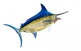 marlin tattoo kuta blue marlin tattoo lovetoknow