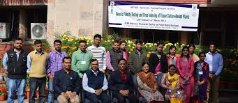 dissertation topics in biotechnology national research centre on plant biotechnology training program sponsored by dbt bcil