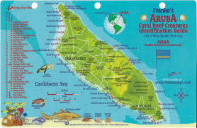 West Palm Beach Zip Code Map by Aruba Dive Map U0026 Reef Creatures Guide Franko Maps Laminated Fish