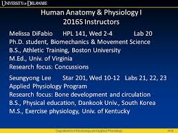 Anatomy And Physiology Exercise 10 Department Of Kinesiology And Applied Physiology Wcr Human Anatomy