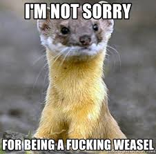 Weasel Meme - i m not sorry for being a fucking weasel theweasel meme generator