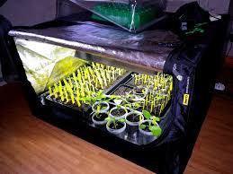 chambre de culture complete pas cher tout pour réussir ses premiers semis d intérieur tous au potager