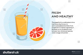 cocktail recipes poster grapefruit juice recipe concept vector flat stock vector 742349470