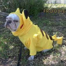 Frenchie Halloween Costume French Bulldog Boston Terrier Pug Dog Froodies Hoodies Halloween