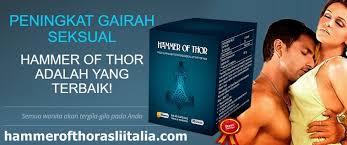 obat thor hammer ampuh cepat dan aman tanpa efek sing
