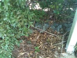 garden rocks assorted sizes pots u0026 garden beds gumtree