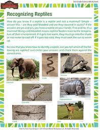 recognizing reptiles u2013 life science materials for third grade