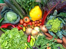 7 best vegetable boxes the independent