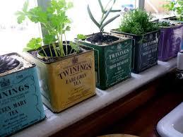 Herb Container Gardening Ideas 5 Ideas How To Make Herb Garden Using Window Method