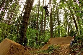 Bmx Backyard Dirt Jumps The Jungle Amazing Trails