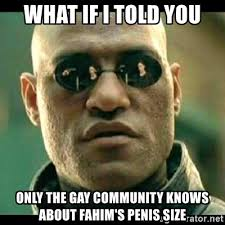 Gay Community Meme - what if i told you only the gay community knows about fahim s penis