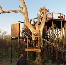 7 cool treehouses that prove you never have to grow up trover blog