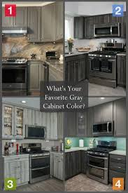Which Kitchen Cabinets Are Best 120 Best Gray Kitchens Images On Pinterest Gray Kitchens