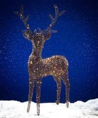 outdoor reindeer lights light up outdoor rattan reindeer brown with 180 warm white led