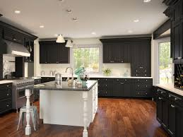 kitchen cabinets for less coquitlam tehranway decoration