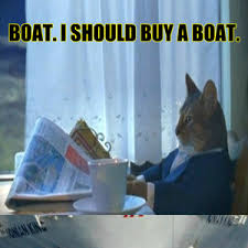 i m a cat how did i even buy this boat in the first place by