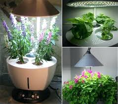 Vertical Garden Pot - indoor garden planter u2013 exhort me