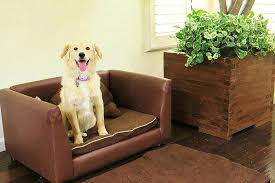 best sofa fabric for dogs best furniture with dogs best sofa for dogs leather furniture dog