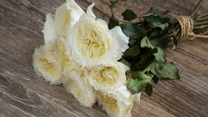 wedding flowers roses the best roses for wedding bouquets southern living