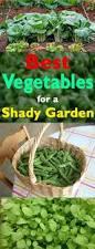 457 best gardening images on pinterest gardening garden
