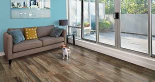 Pergo Maple Laminate Flooring Weatherdale Pine Pergo Xp Laminate Flooring Pergo Flooring