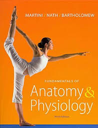 Human Anatomy Physiology Laboratory Manual Pdf Fundamentals Of Anatomy U0026 Physiology Masteringa U0026p With Pearson