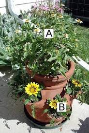 Container Flower Gardening Ideas Container Flower Ideas Zinnias And Gazanias In A Strawberry Pot