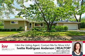 homes for sale in palatine il brought to you by ivette anderson