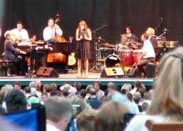 pink martini splendor in the grass pink martini wikipedia