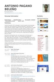 19 best resumes images on pinterest nu u0027est jr web developer