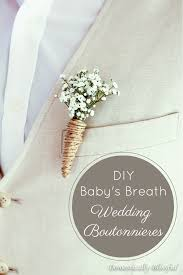 wedding boutonniere baby s breath wedding boutonnieres