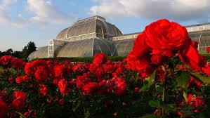 Botanical Gardens Images by Royal Botanic Gardens Kew Unesco World Heritage Centre