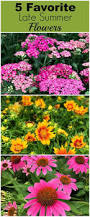 777 best flower gardening images on pinterest flowers