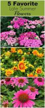 1150 best gardening images on pinterest flower gardening