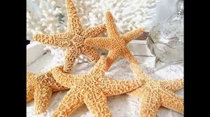 starfish decorations creative starfish decorations ideas