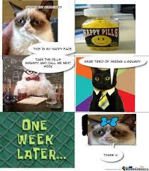 Meme Generator Grumpy Cat - grumpy cat smiles by lolabunny413 meme center
