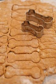 Diy Dog And Cat Treats by Homemade Dog Biscuits Pumpkin U0026 Peanut Butter Gemma U0027s Bigger