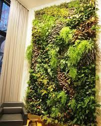plantwalldesign u2013 vertical gardens technology