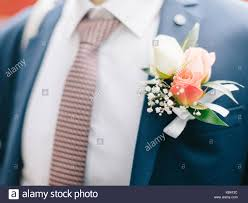 groom s boutonniere pinning boutonniere stock photos pinning boutonniere stock