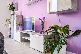 chambre avec privatif belgique plante interieur ombre pour chambre avec privatif belgique
