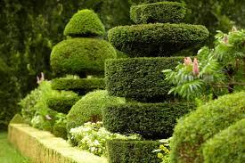 image amenagement jardin création aménagement entretien de jardin la tour de salvagny