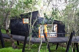 tree houses on stilts home design ideas
