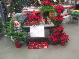 poinsettia sale 2016 black friday home depot 2016 29 best home depot displays images on pinterest home depot
