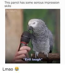 Parrot Meme - 25 best memes about parrot parrot memes