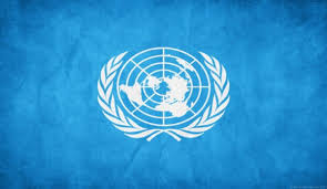 Picture Of Un Flag David Shearer Special Representative For South Sudan And Head Of